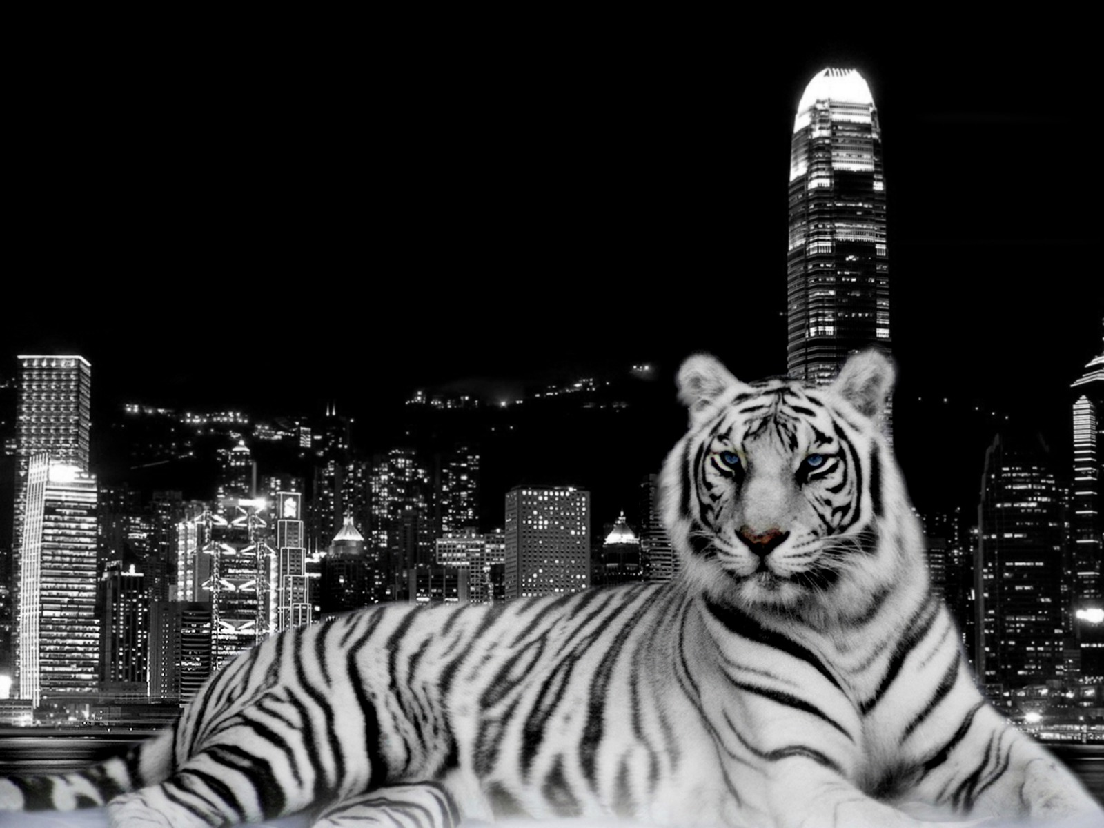 Tiger wallpapers hd free download - Tiger hd wallpaper for pc ...