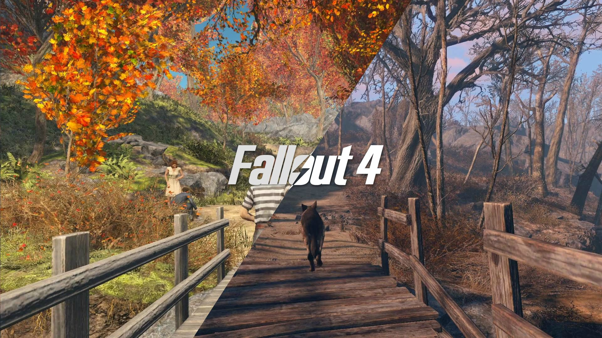 fall Out 4 HD wallpaper for download