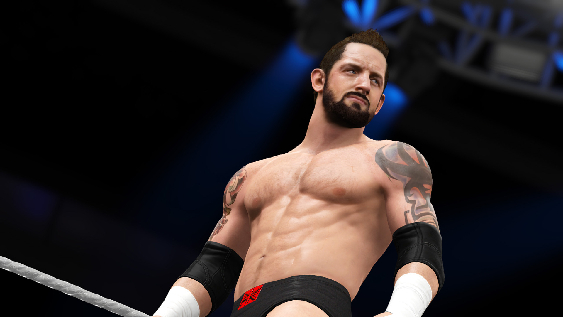 Wwe 2k16 Hd Wallpapers Free Download