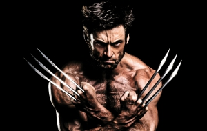Wolverine 3 HD Wallpaper
