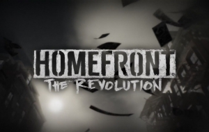 Homefront: The Revolution Background