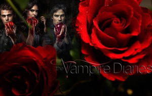 Vampire Diaries Desktop