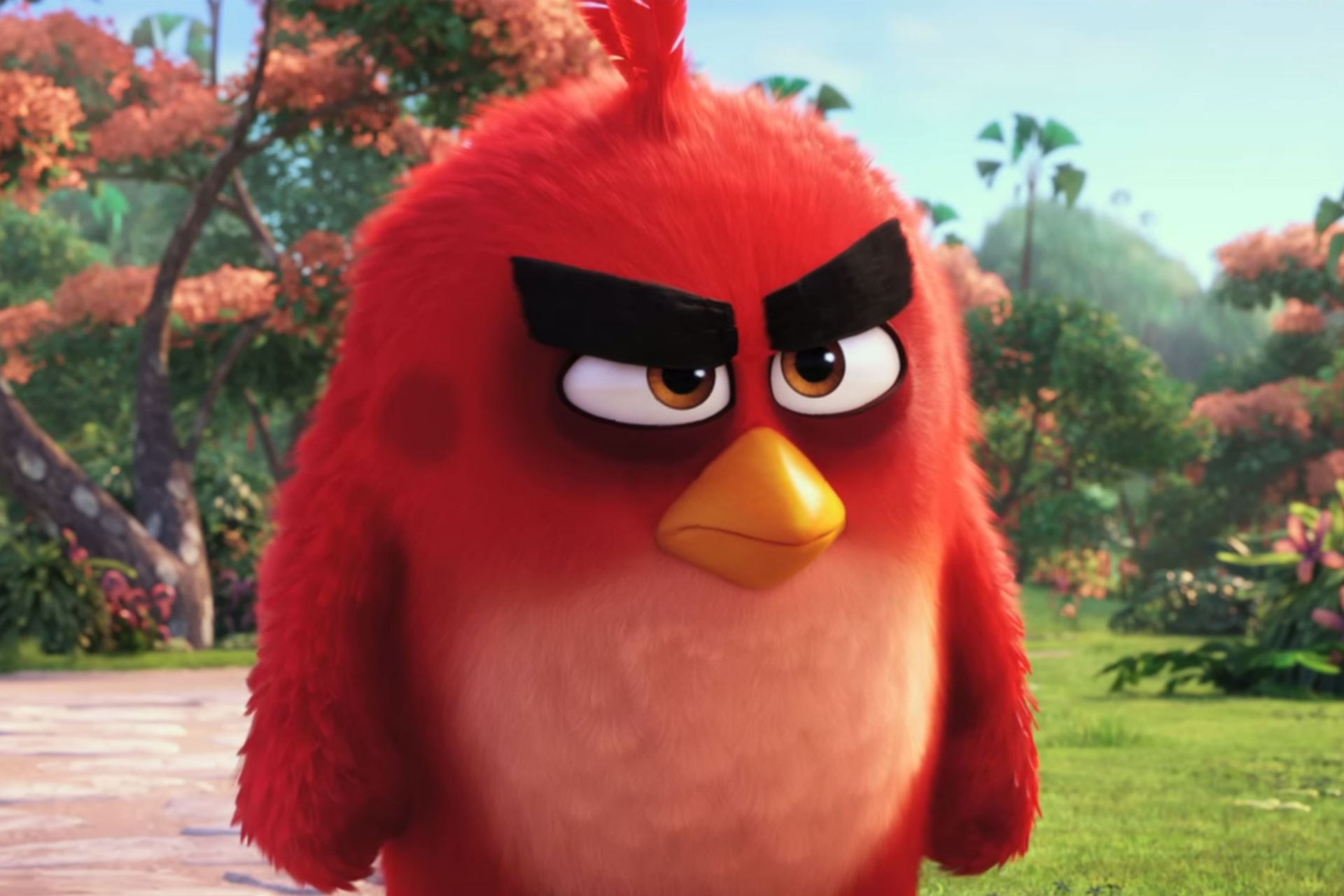 the angry birds movie wallpapers high resolution and quality download. Black Bedroom Furniture Sets. Home Design Ideas
