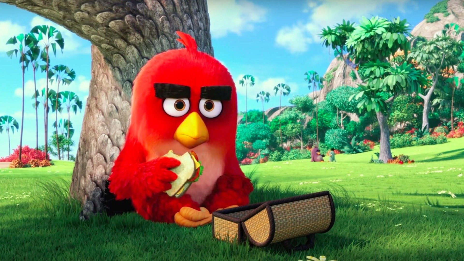 Best HD Angry Birds Wallpapers DezineGuide