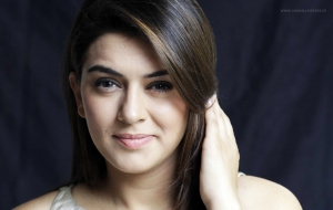 Hansika Motwani High Quality Wallpapers