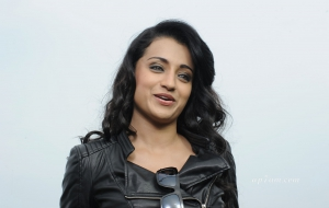 Trisha High Quality Wallpapers