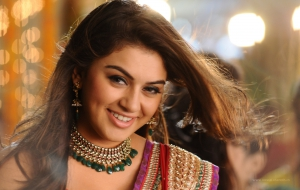 Hansika Motwani HD Wallpaper