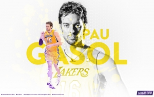 Pau Gasol HD Wallpaper