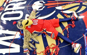 New Orleans Pelicans HD Desktop