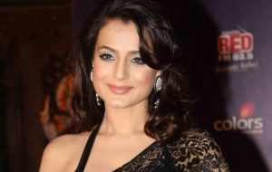 Ameesha Patel Wallpapers