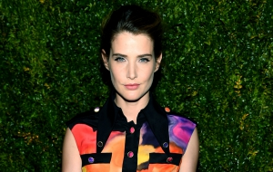 Cobie Smulders for desktop
