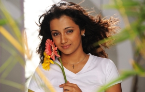 Trisha Wallpapers HD