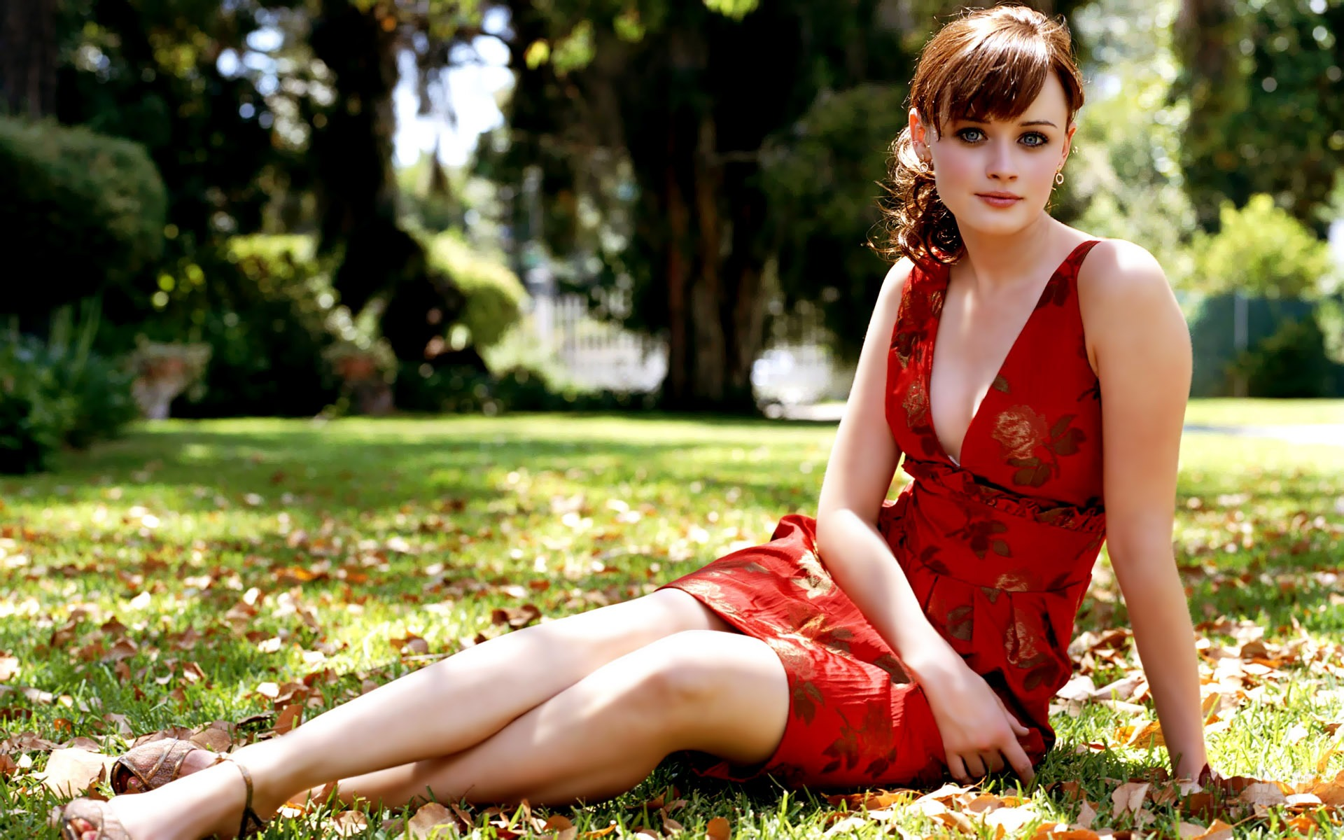 alexis bledel wallpapers high resolution and quality download
