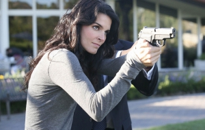 Angie Harmon Images