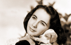 Elizabeth Taylor High Definition Wallpapers