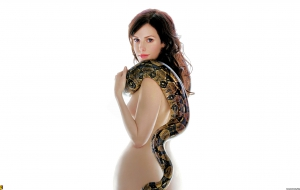 Mary Louise Parker High Quality Wallpapers
