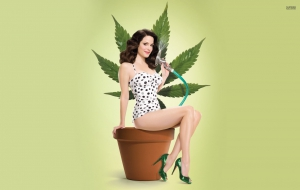 Mary Louise Parker Widescreen