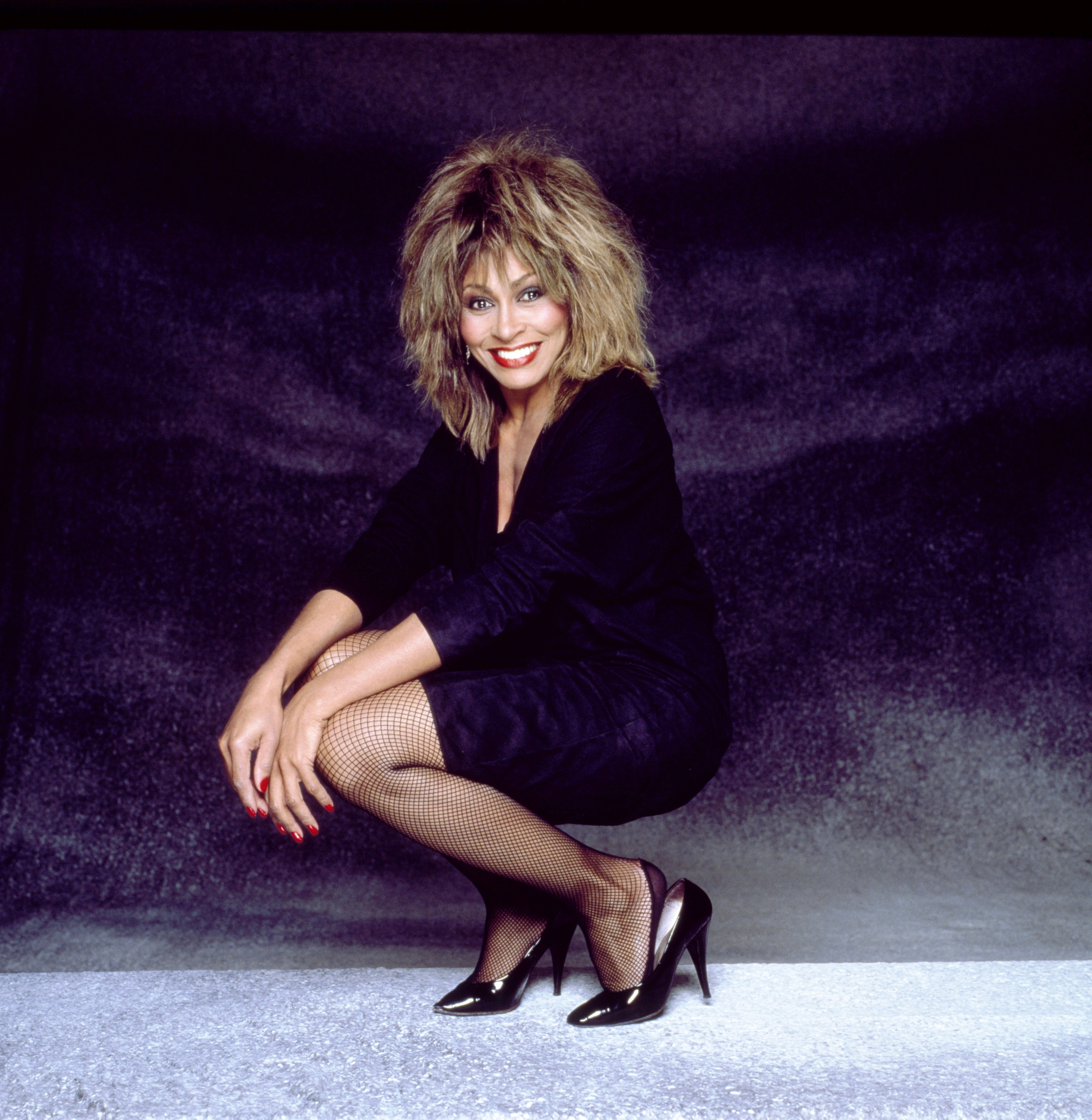 tina turner i will survive