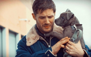 Tom Hardy For Desktop