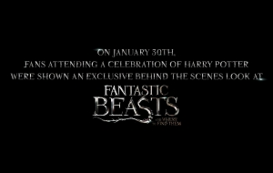 Fantastic Beasts And Where To Find Them High Definition
