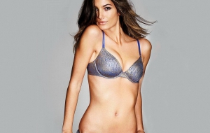 Lily Aldridge Background