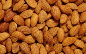 Almond Photos