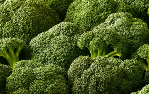 Broccoli HD