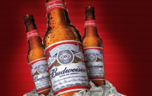Budweiser Wallpapers