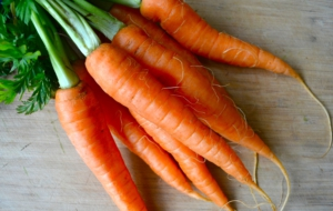 Carrots Wallpaper