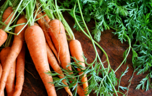 Carrots Full HD