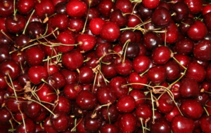 Cherries Pictures