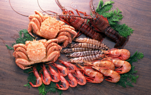 Chinese Seafood Images
