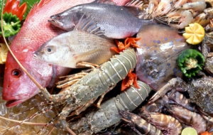 Chinese Seafood Pictures