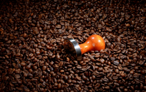 Coffee Beans With Tamper Coffee Business Concept