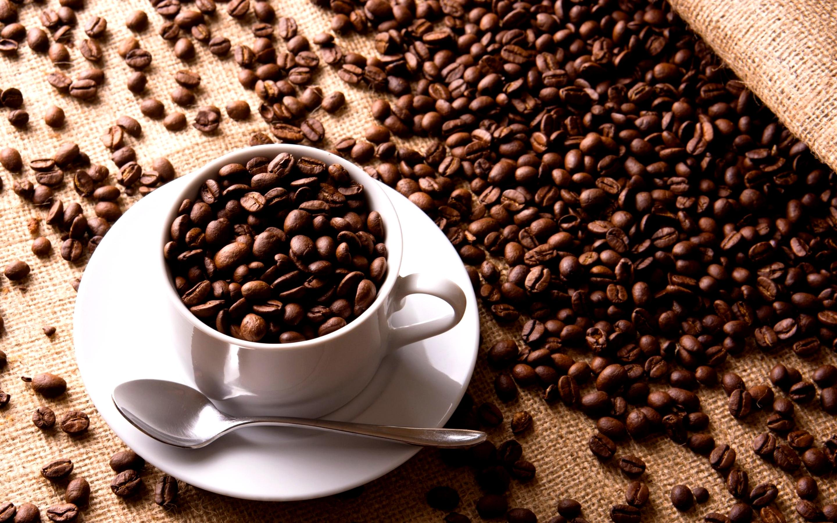 Coffee-Beans-HD-Wallpaper.jpg