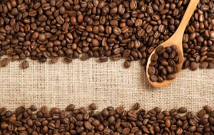 Coffee Beans Photos