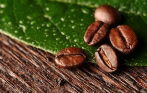 Coffee Beans For Desktop