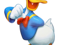 Donald Duck Pictures