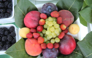 Fruit HD Desktop