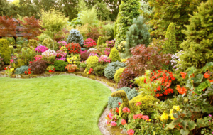 Bloom Flower Garden Wallpaper