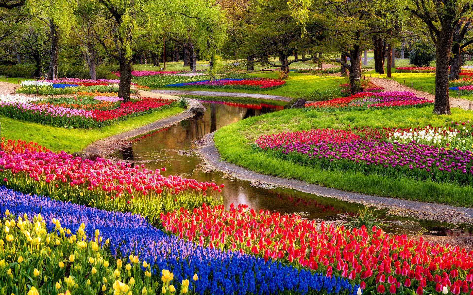Garden flower hd wallpapers for Flower garden landscape