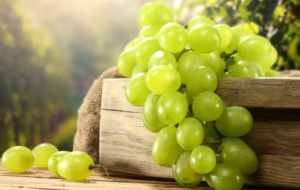 Grapes HD Background