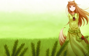Holo High Definition Wallpapers