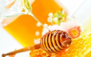 Honey High Definition Wallpapers