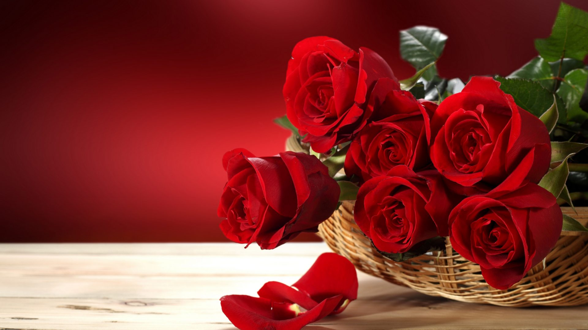 Red flower hd wallpapers - Red rose flower hd images ...