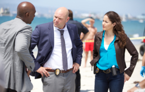 Rosewood TV Series Background