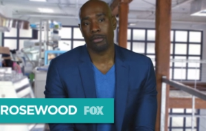 Rosewood TV Series Pictures