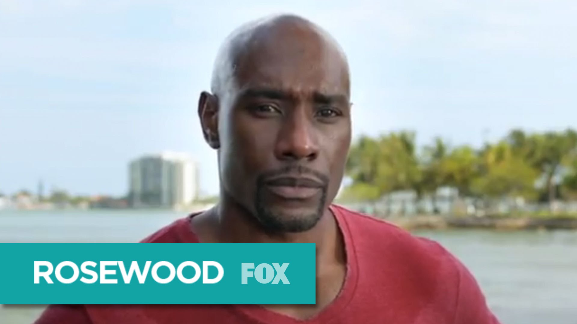 Rosewood tv series hd wallpapers for The rosewood