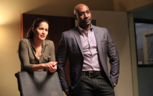 Rosewood TV Series Widescreen