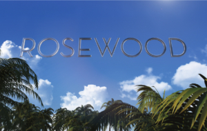 Rosewood TV Series Full HD